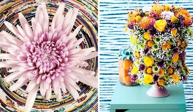 Meer kleur in huis met chrysant