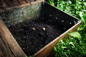 zelf compost maken: plaats bak