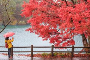 deel je herfstfoto met ons