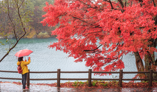 Deel jouw herfstfoto met ons!