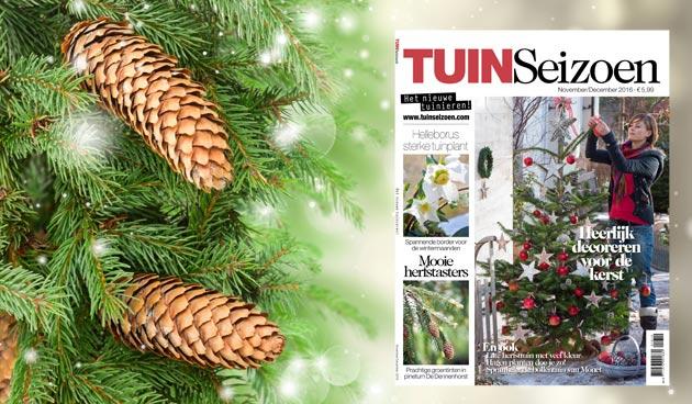 Tuinseizoen november/december