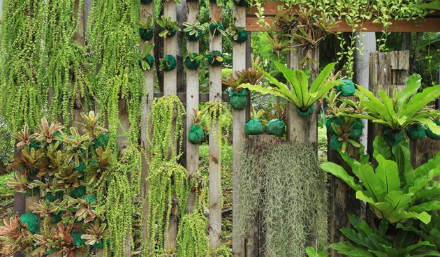 Verticale tuin maken tuinseizoen