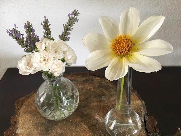 zomerbloemen binnen