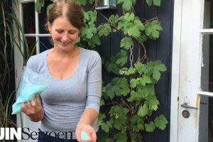 Hortensia's blauw houden - Tuinseizoen
