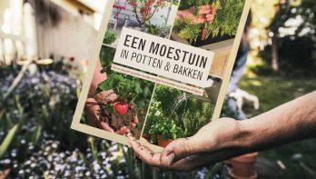 Win: Het boek een Moestuin in potten en bakken