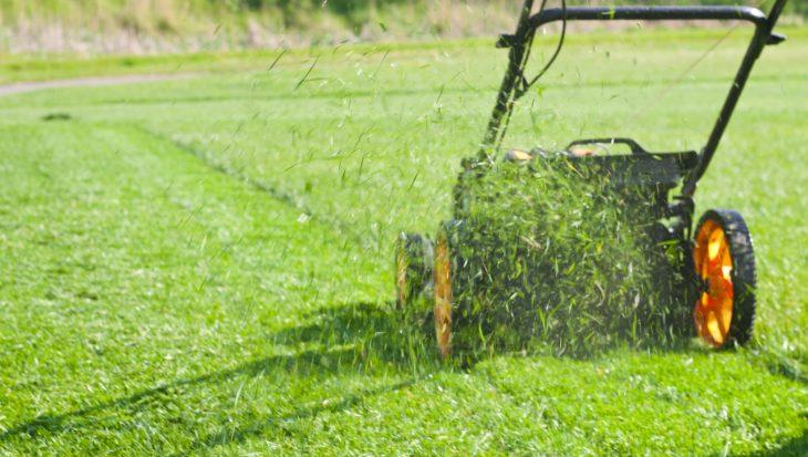 Gras afrijden van je gazon: het stappenplan