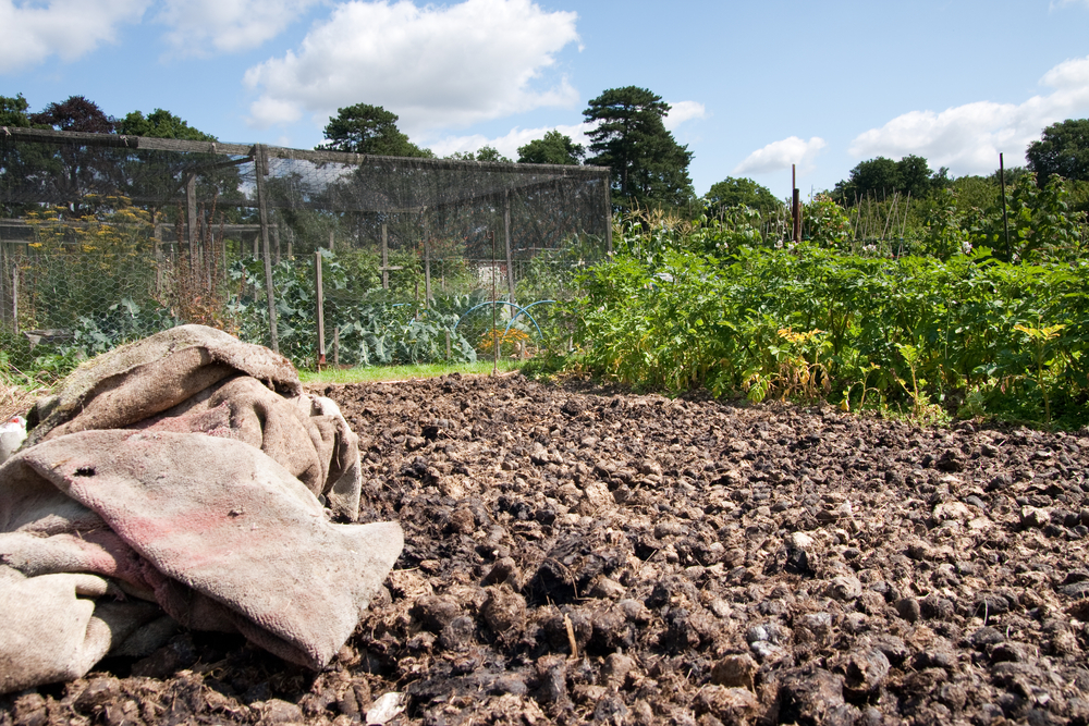 moestuin, compost, tuinklusjes, maart