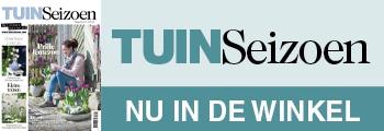 nu-in-de-winkel-banner_TS