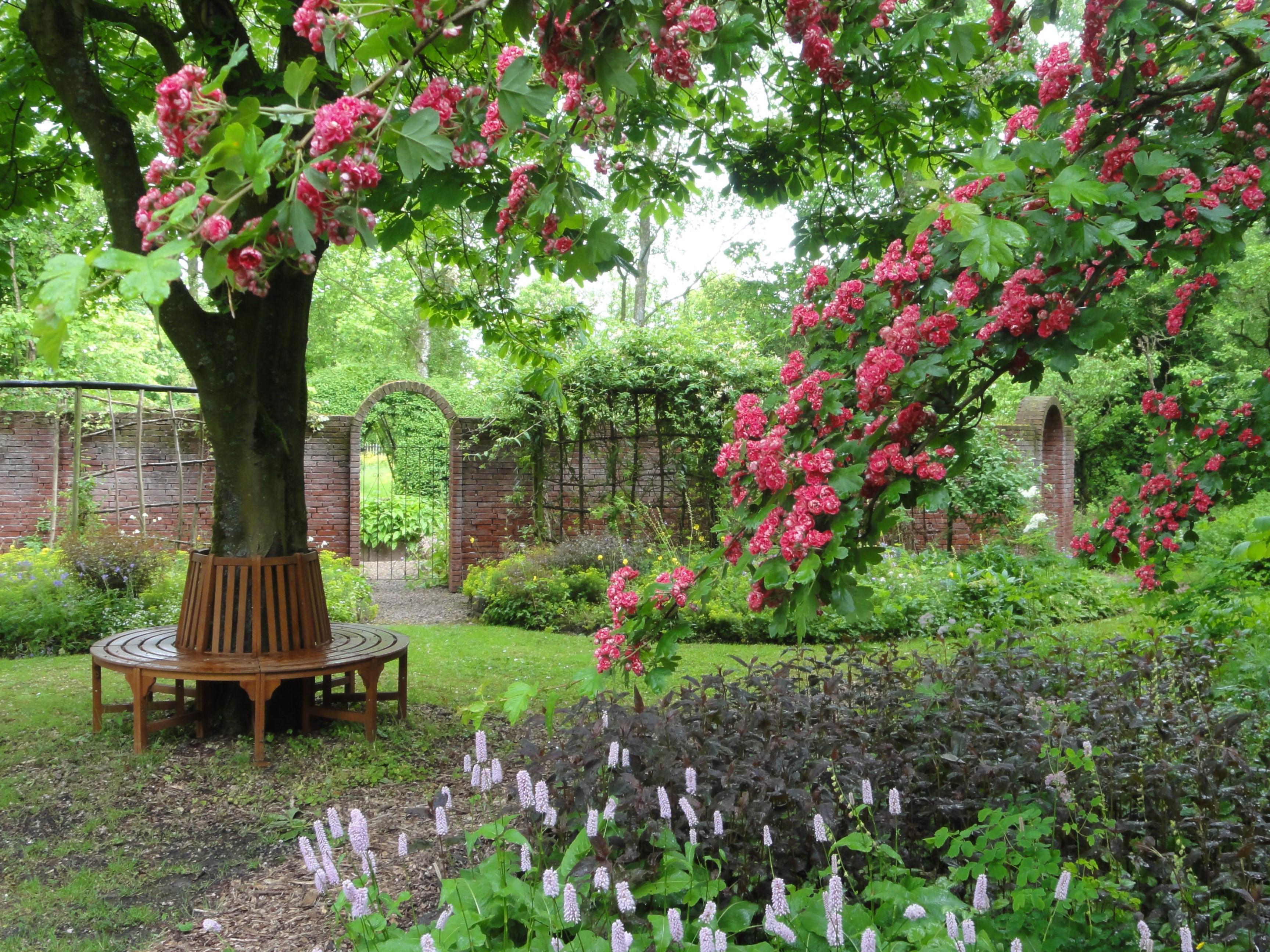 De Magische Tuin : Open tuin magische momenten tijdens langste dag zintuigen