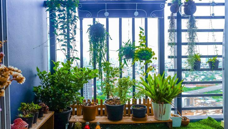 Tuinieren op hoogte