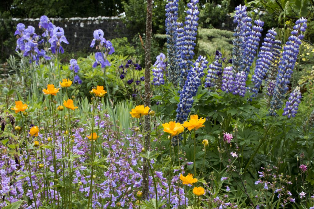 Tuinen in Schotland