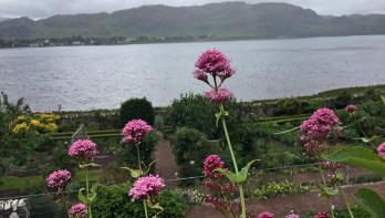 Verslag Lezersreis Schotland: Prachtige tuinen en schitterende natuur