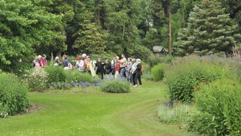 Puzzel augustus: win kaarten voor Arboretum Kalmthout