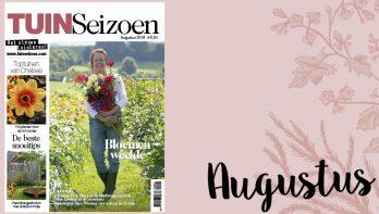Tuinseizoen augustus 2018