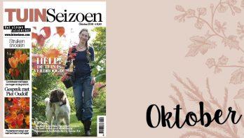 Tuinseizoen oktober 2018