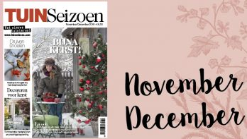 Tuinseizoen november-december 2018