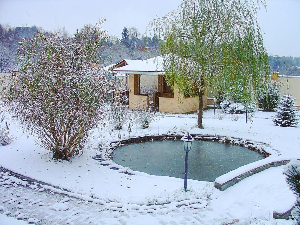 Tuin, sneeuw, vijver, bevroren, ijs,