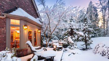 Wat te doen met je tuin bij sneeuw en vorst