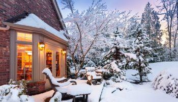 Tuin, sneeuw, vorst, tips