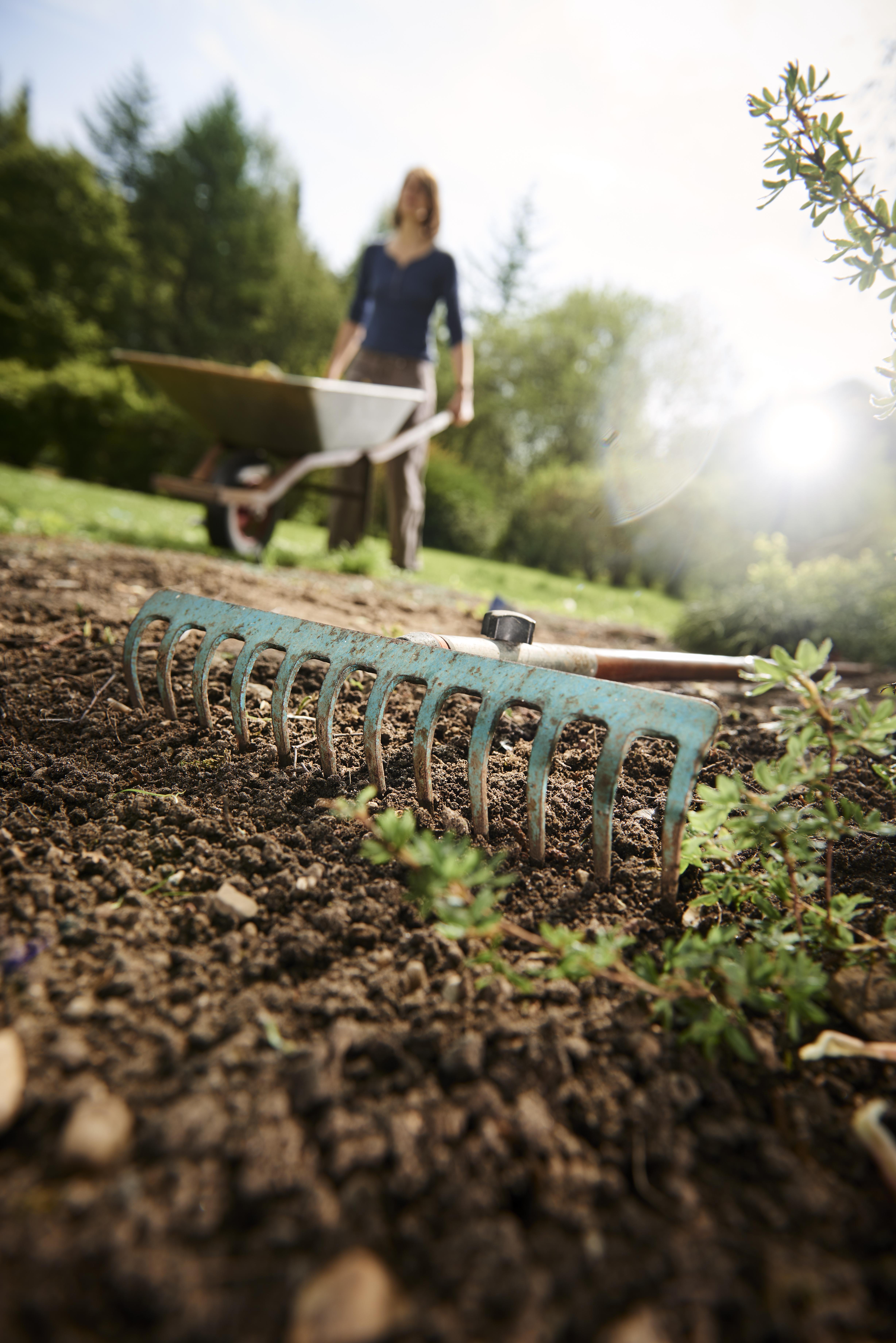 Tuingrond, grond, aarde, tuinieren, zand
