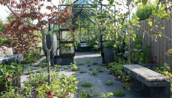 Trendtuinen, tuin, trends, harvesting elements, kas, groen, tuinieren, waterdoorlatende tegels, duurzaamheid, recycling