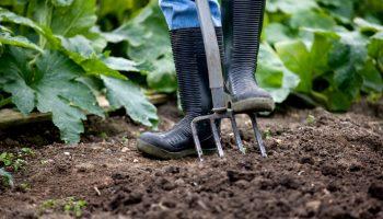 compost, moestuin, angelo dorny, gezonde grond, tuinseizoen
