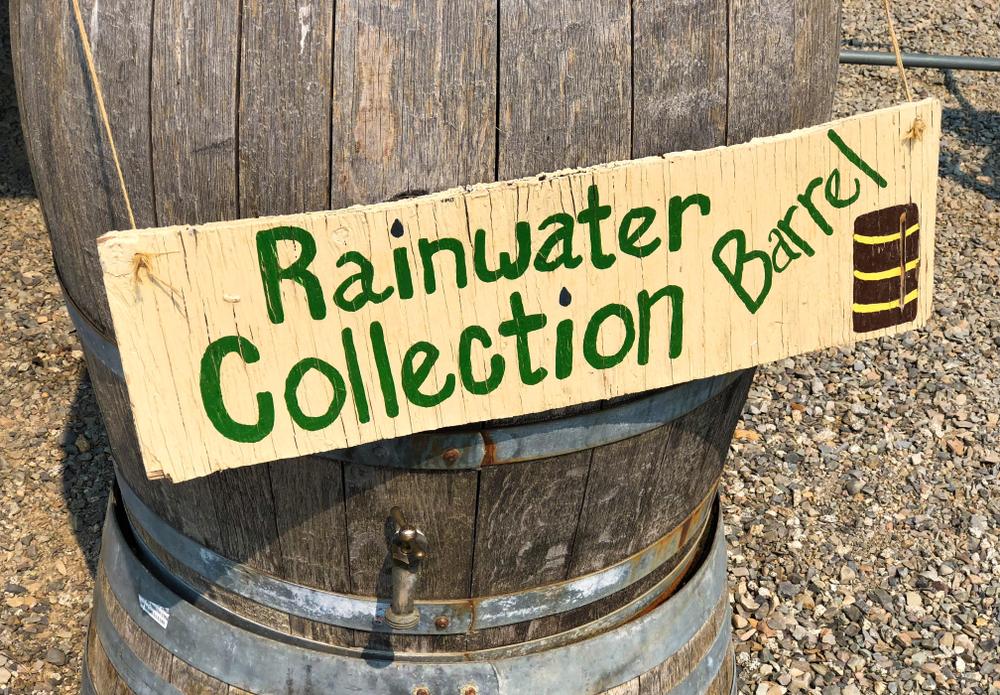 regenton, regenwater, tips, water opvangen, regen, tuinseizoen