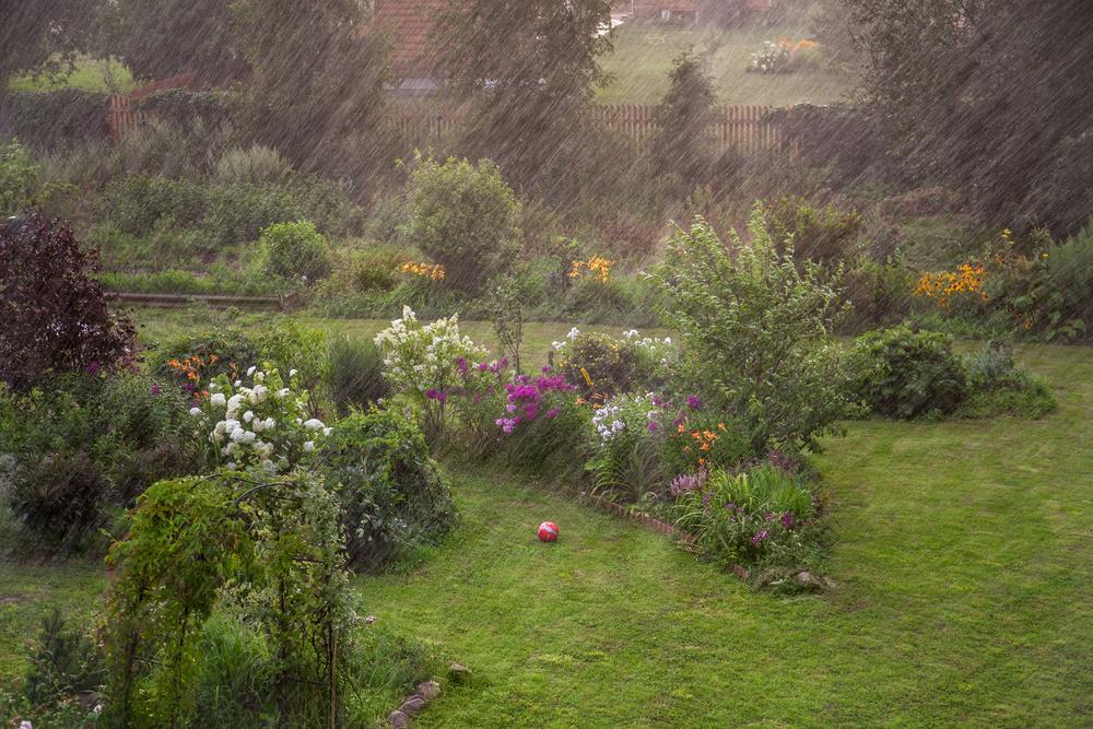 Regenwater, tuin, wateroverlast, regen, tuinseizoen