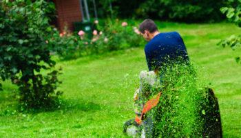 Grasmaaien, Nederlanders houden van tuinieren