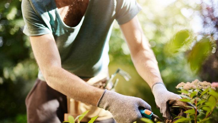 Tuinklussen in mei: van tuinmeubelen onderhouden tot oogst beschermen