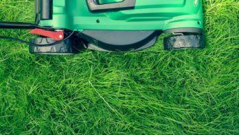 Duurzaam tuinieren: het kan nóg groener!