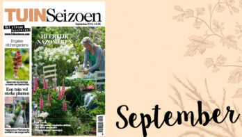 Tuinseizoen september 2019