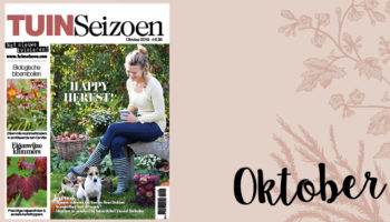 Tuinseizoen oktober