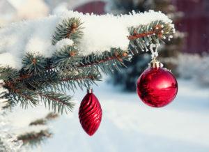 Witte kerst- Dromen van kerstmis