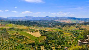 Tuinen-cultuurreis Zuid-Spanje 17 t/m 24 april 2020
