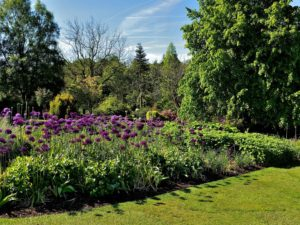 Harlow-Gardens