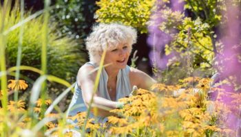 Genieten in de tuin