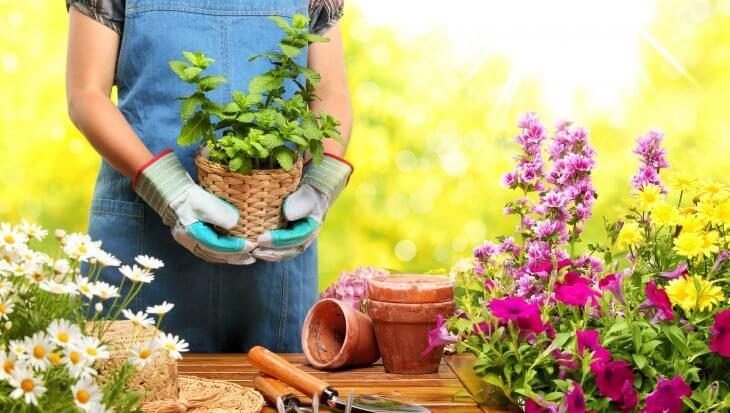 Hoe tuinieren je kan helpen tijdens deze crisis