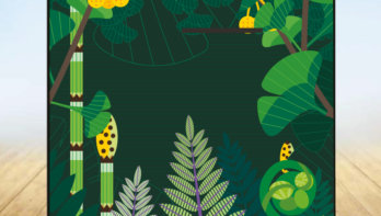 Puzzel juli 2020: win een picknickkleed Hortus botanicus Leiden