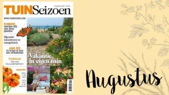 Tuinseizoen augustus 2020