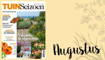 Tuinseizoen augustus