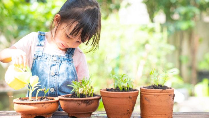 Tuinieren met de kinderen: een eigen stukje tuin