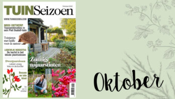 Tuinseizoen oktober 2020