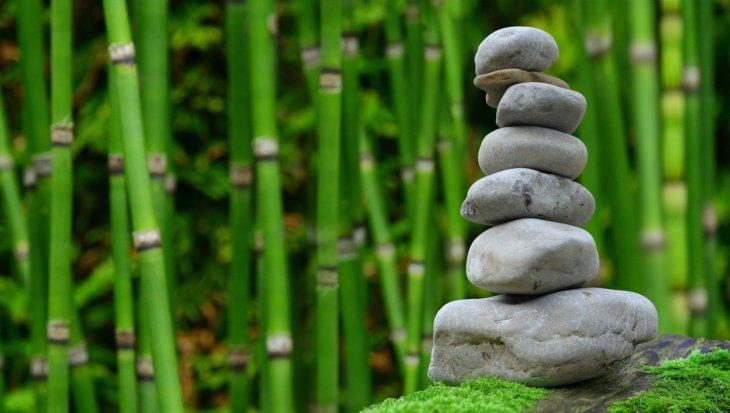 Wellness tuin aanleggen