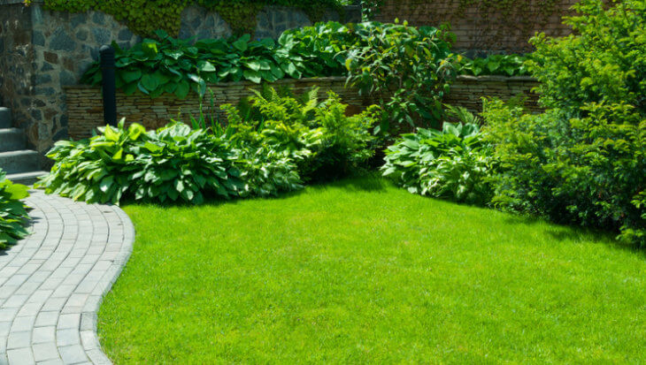Verhoog je woningwaarde met de tuin
