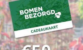 Puzzel januari-februari 2021: win 1x oude perenboom en 2x cadeaukaart van Bomenbezorgd.nl