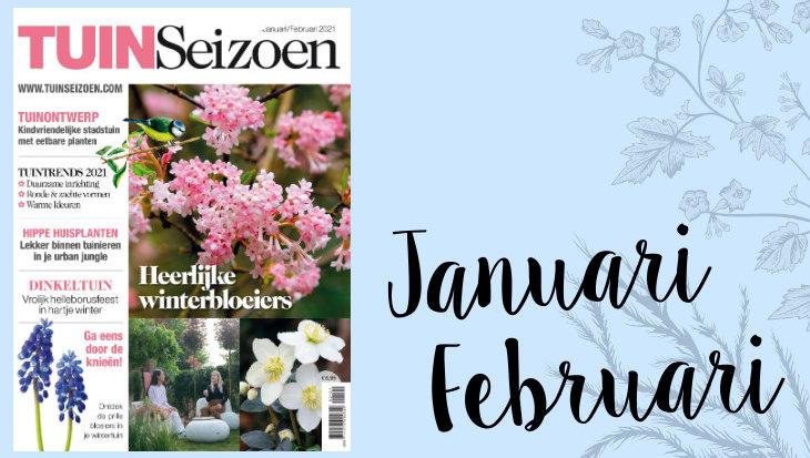 Tuinseizoen januari-februari 2021