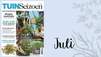 tuinseizoen juli