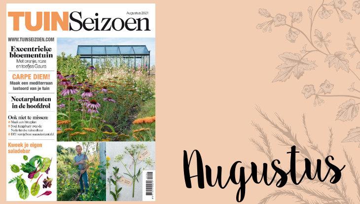 Tuinseizoen augustus 2021