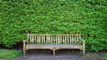 Meer tips voor een duurzame tuin